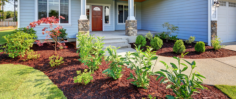 A landscape bed of bushes and shrubs protected by mulch in Haslett, MI.